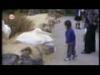 Zákeřné útoky ptáků na lidi #Video